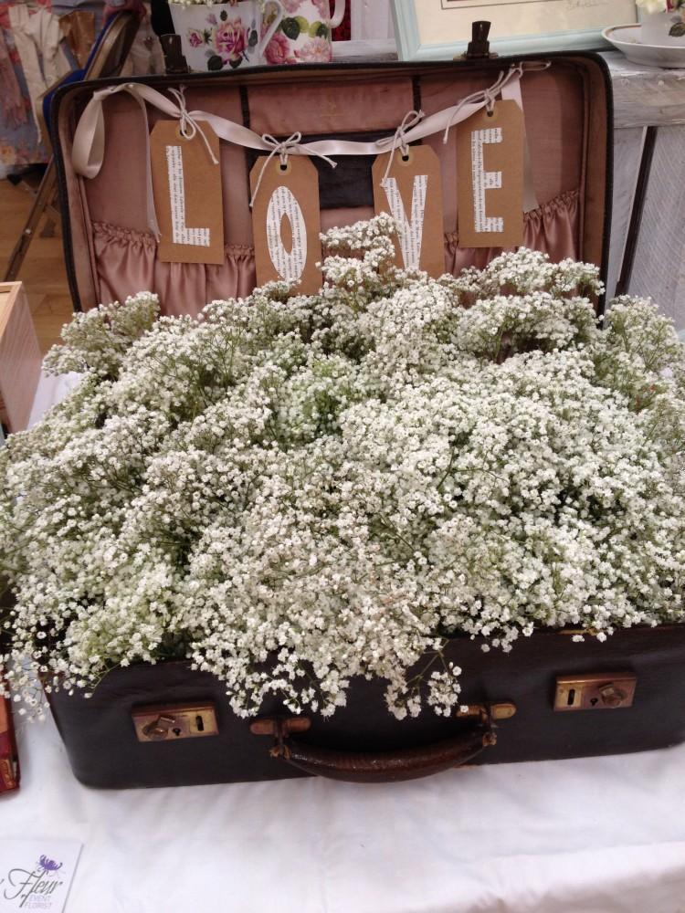 gyp in vintage suitcase