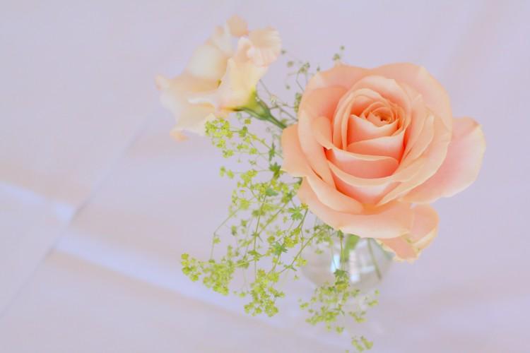 rose in a cut glass vase