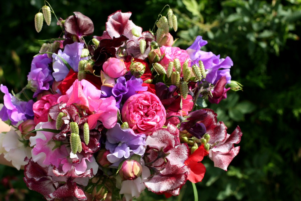 sweet pea and rose bouquet