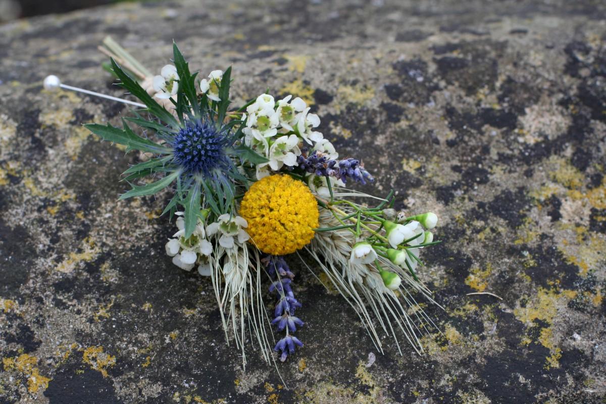thistle and craspedia buttonhole