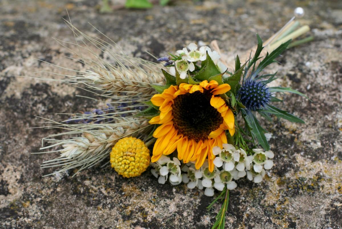 grooms sunflower buttonhole