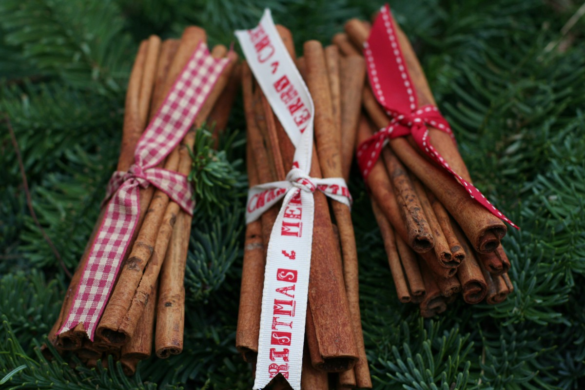 Christmas cinnamon sticks