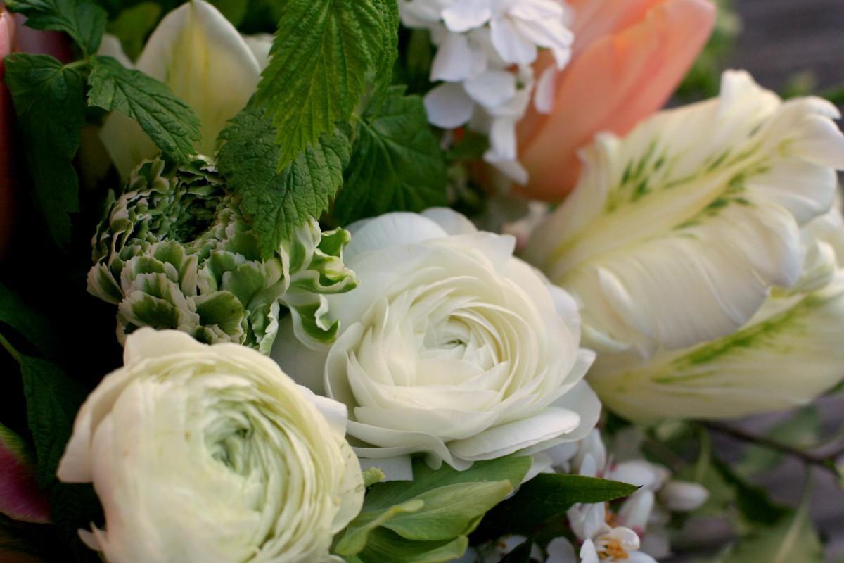 British flowers