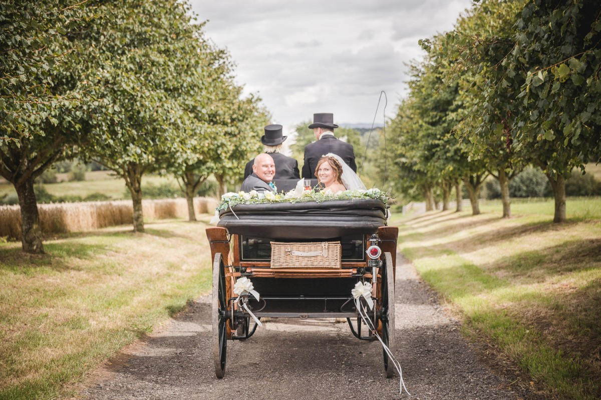 horse drawn carriage country wedding