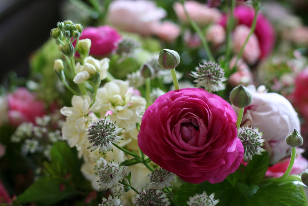 spring flowers detail