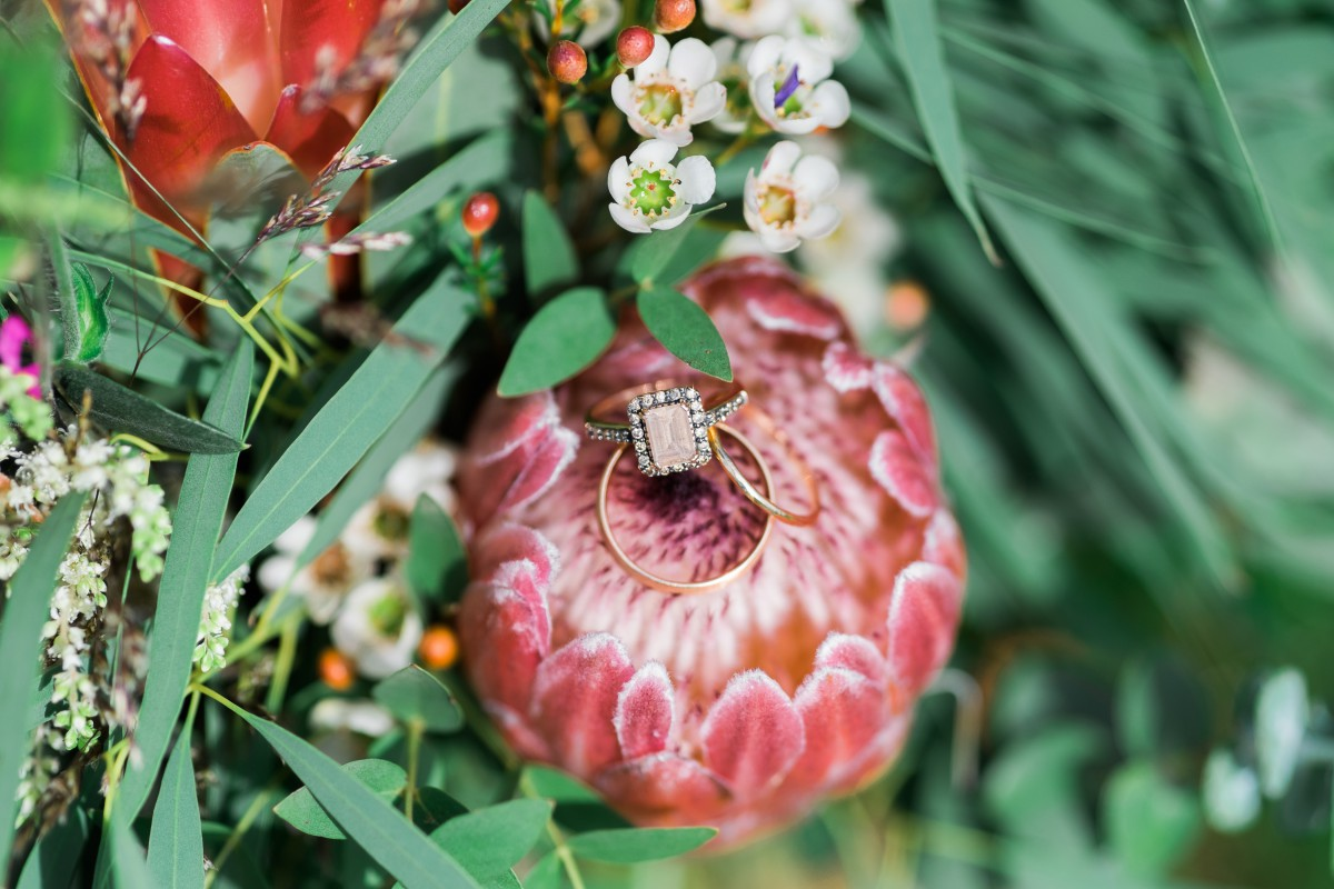 wedding ring on a Protea